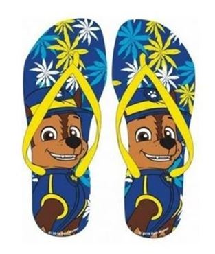Picture for category Kids Flip Flops